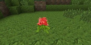 OmegaCraft-Photo-Realistic-Resource-Pack-10
